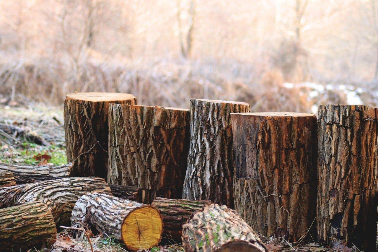 Wood Information Lancaster