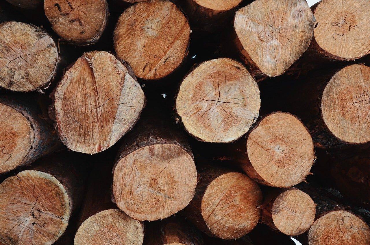 Storing Logs Lancaster